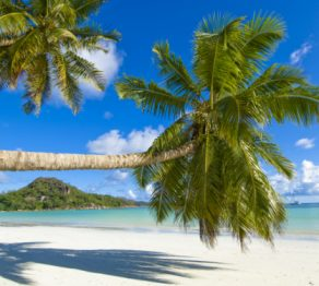 The otherworldly islands… The Seychelles