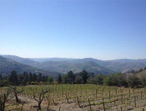 A long weekend in… The Douro Valley