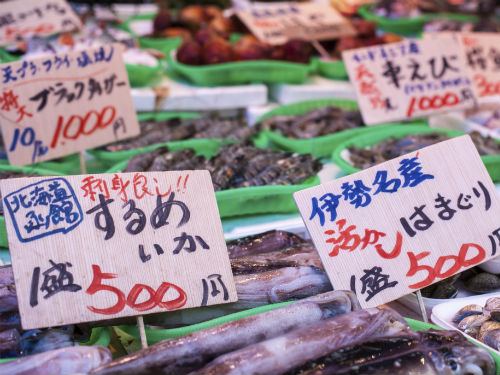 Frequently Asked Questions  Japan