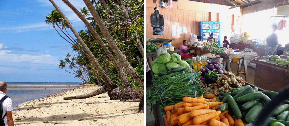 The-beach-and-SavuSavu-market