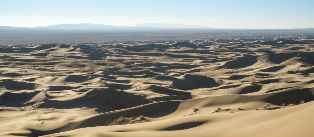 Have a desert experience in Mongolia