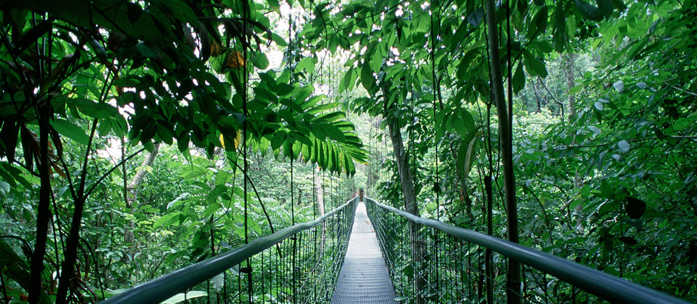 hanging-bridge-costa-rica