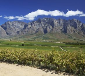 South Africa… 5 Western Cape experiences