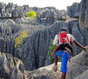 Western Madagascar…  journey to the Great Tsingy