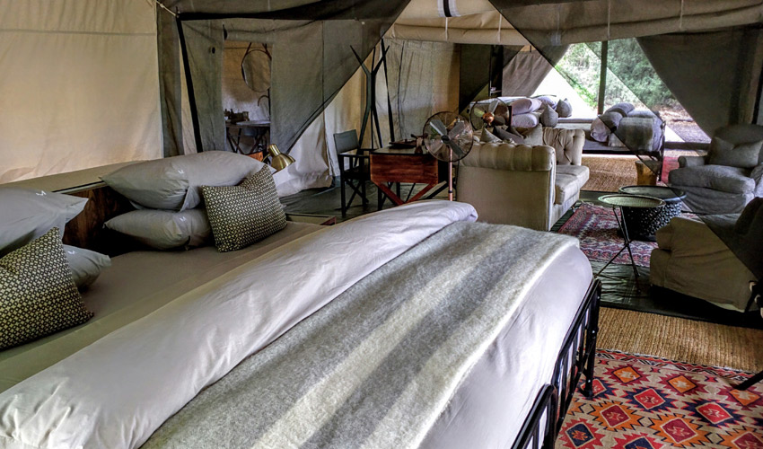 luxury-tent-at-machaba-camp