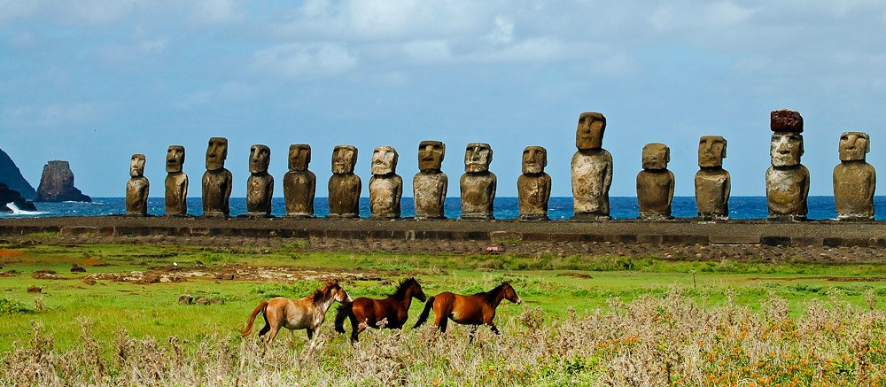 Wild horses running in front of moai statues on Easter Island, Chile