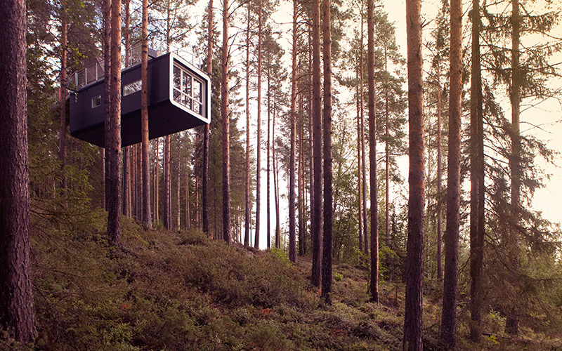treehotel the cabin