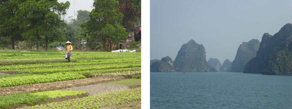 Going to Halong Bay