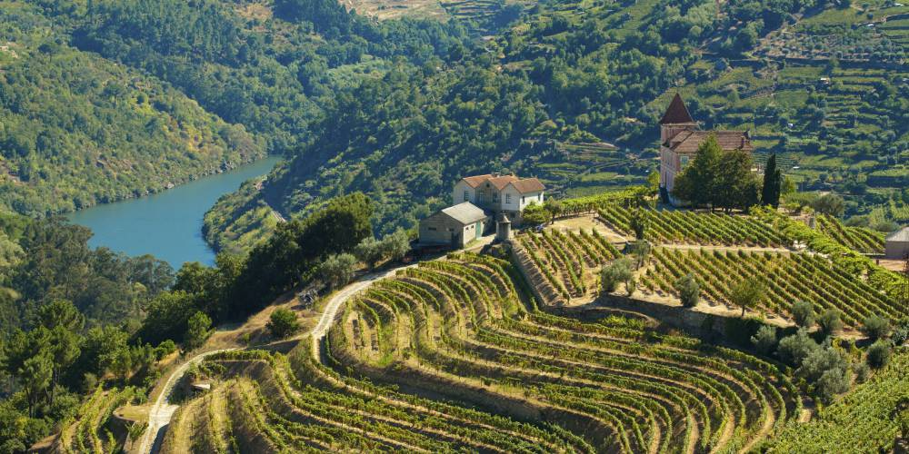Douro river and vineyards, Douro Valley, Portugal