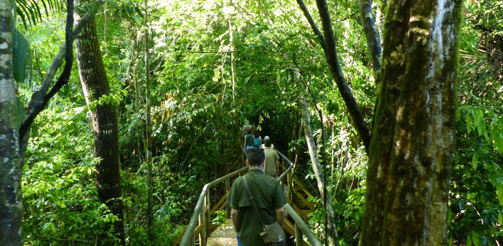 Walking trails in Manuel Antonio national park in Costa Rica