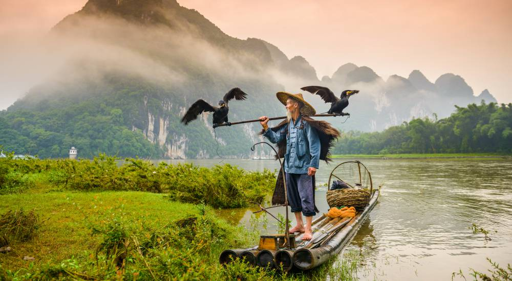 Traditional cormorant fisherman works on the Li River Yangshuo