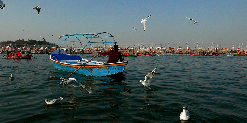 Birds and Boats at the Sangam Confluence