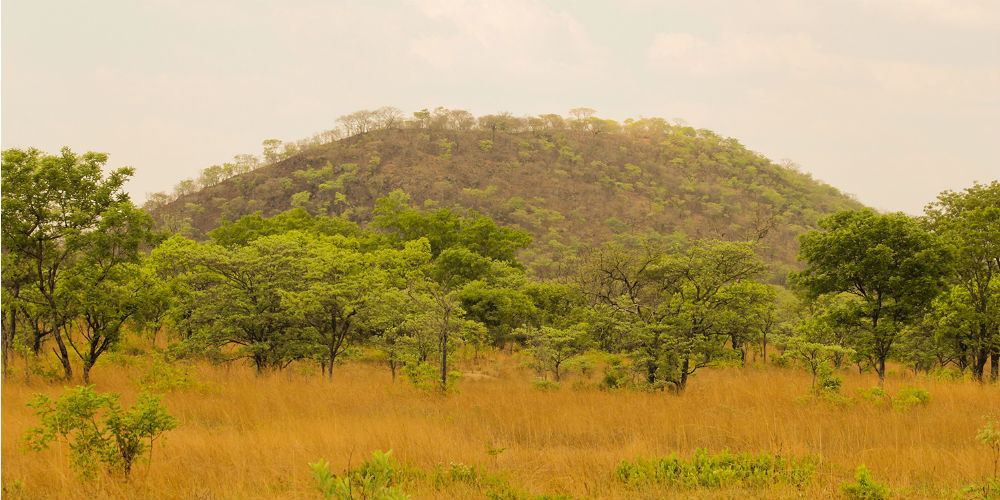 Landscape of Kafue National Park, Zambia