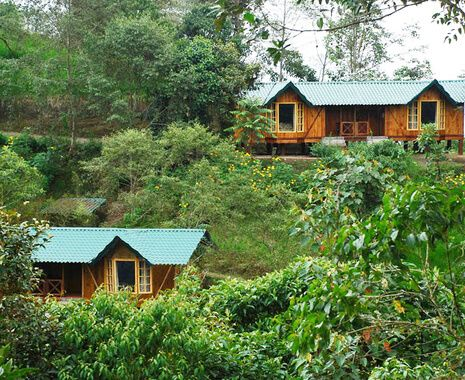 Sachatamia Rainforest Lodge